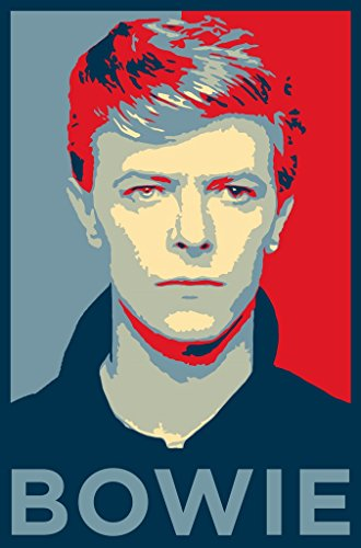 David Bowie Us Imported Music Wall Poster Print 30cm X