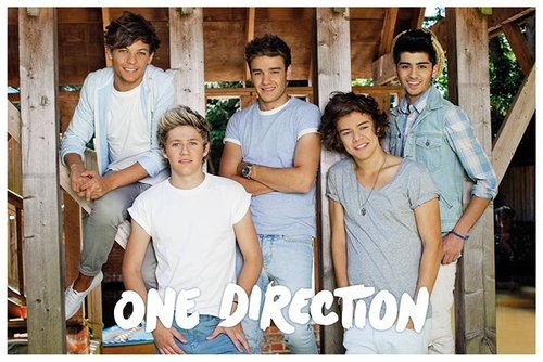 Poster One Direction 79526