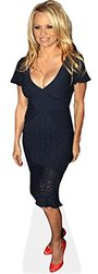 Celebrity Cutouts Pamela Anderson Taille Mini