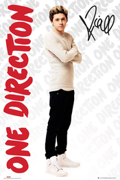 Poster One Direction 106063