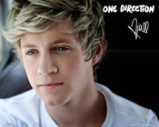 Poster One Direction 106075