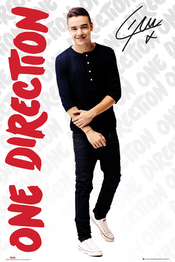 Poster One Direction 106081