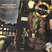 David Bowie - The Rise And Fall Of Ziggy Stardust Jigsaw Puzzle