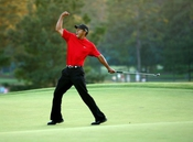 Tiger Woods Poster Photo Celebrity Golf Pga Champion Limited Print Size 24x36 #2 By Photo Posters